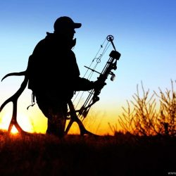 72338_bow-hunting-archery-archer-bow-arrow-hunting-weapon-wallpapers_1698x1131_h