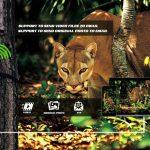 Trail camera tips: How Do WildGuarder Trail Cameras Work?