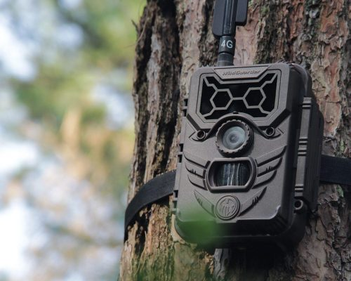 Why Should You Use Trail Camera as a Home Security Camera-4