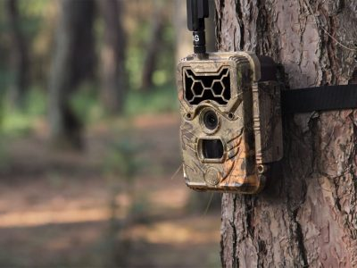 WildGuarder 4G trail camera