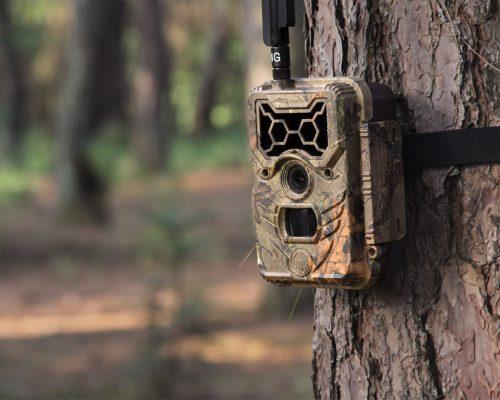 WildGuarder 4G trail camera