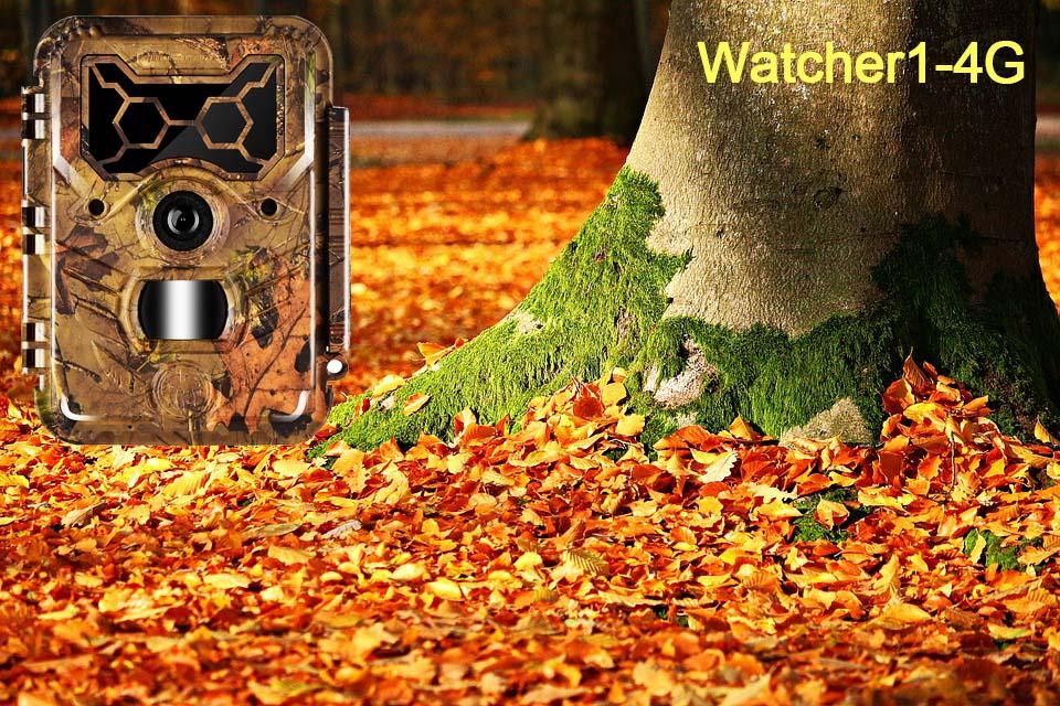Watcher1-4G trail camera