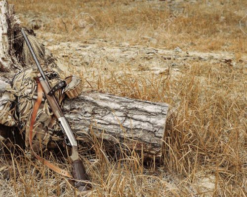 Autumn hunting season. Hunting Conceptual background. Outdoor sports