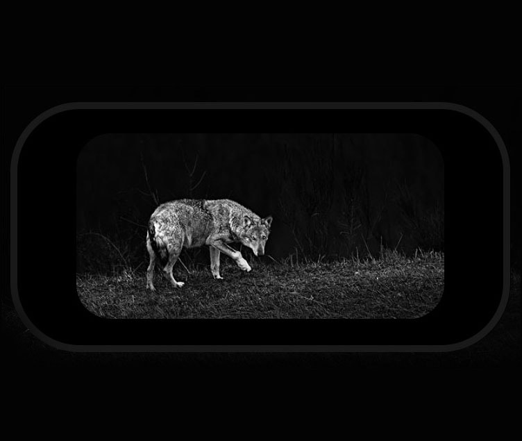 Wildguarder-NB1-night-vision-binocular-30